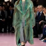 Christian Dior Ready to Wear F/W 2015 PFW
