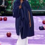 Christian Dior Haute Couture F/W 2015 Paris
