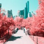 New York through an Infrared Lense