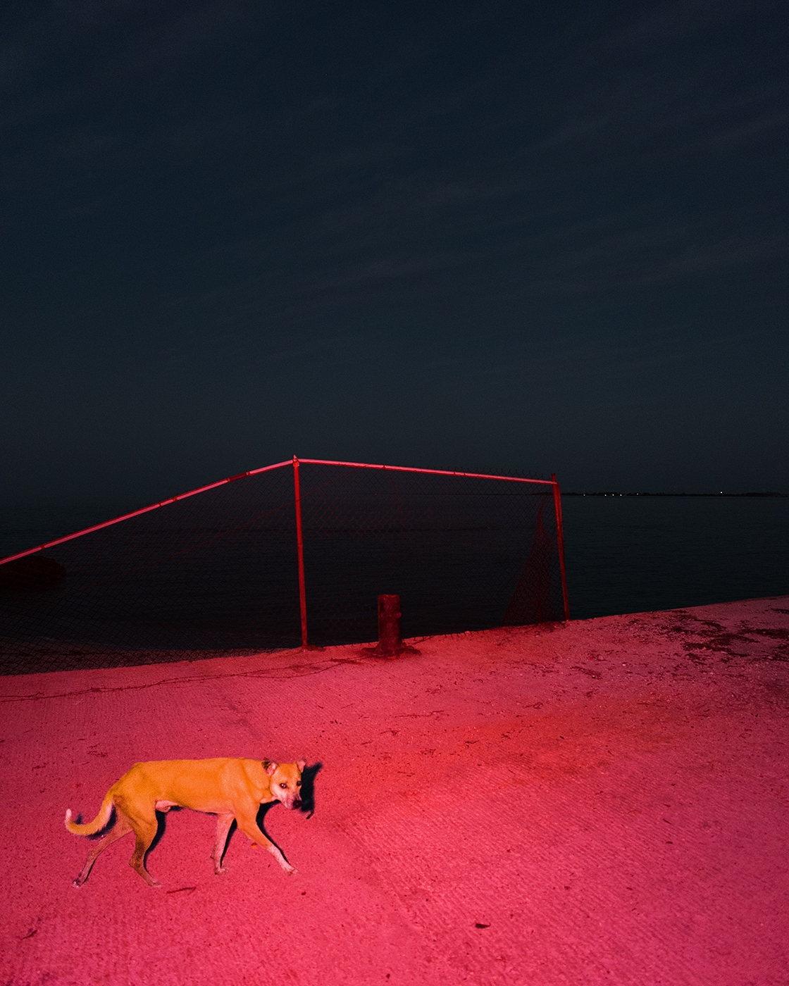 Surreal Mexico by Benoit Paille (1)