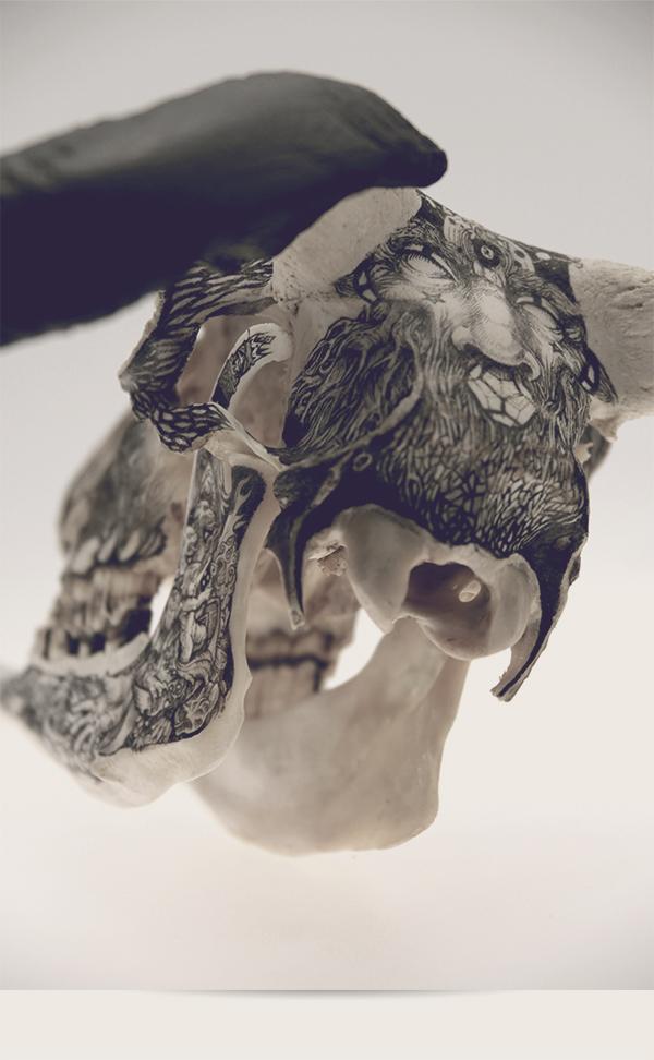 Illustrations on Skulls by DZO Olivier (8)