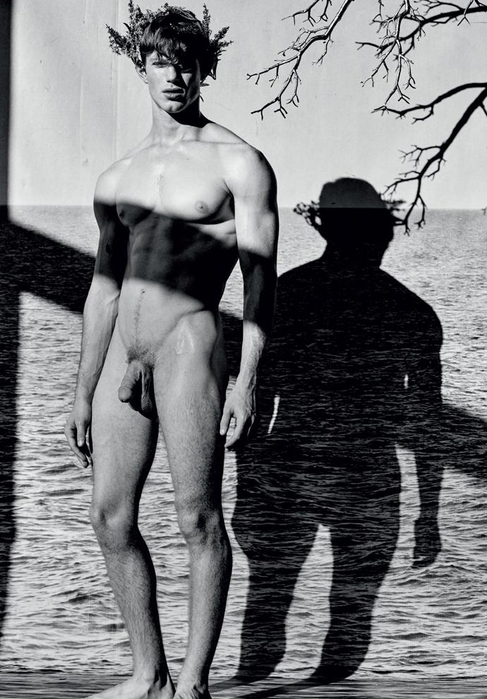 Scylla by Mariano Vivanco (3)