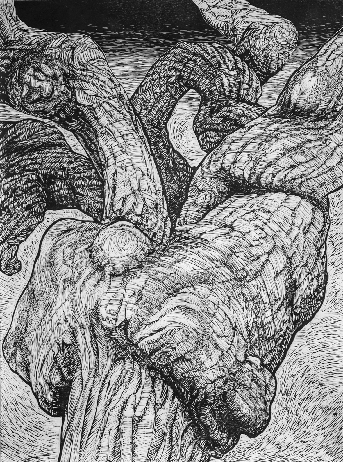 morphologies-vegetales-by-helene-damville-1