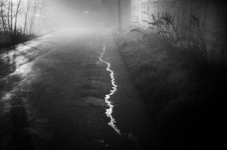 a-ravens-dream-by-stavros-stamatiou-1