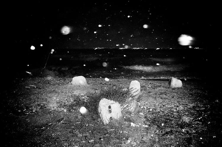 a-ravens-dream-by-stavros-stamatiou-4