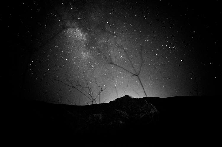 a-ravens-dream-by-stavros-stamatiou-5